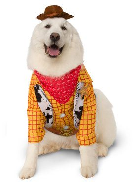 Pet Toy Story Big Dogs Woody Costume