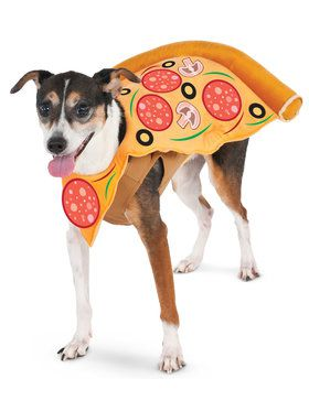 Pizza Slice Pet Costume Medium