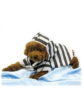 Pet Prisoner Costume