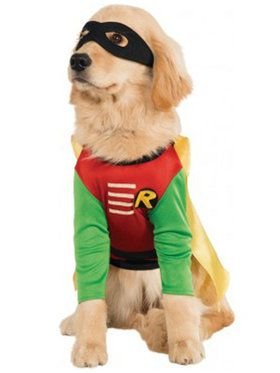 Robin Costume For Pets