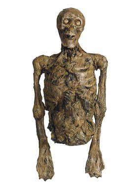 Rotten Skeleton Torso - Large