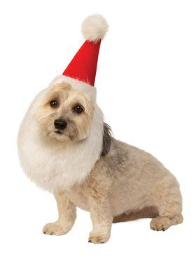 Santa Hat with Beard for Pets