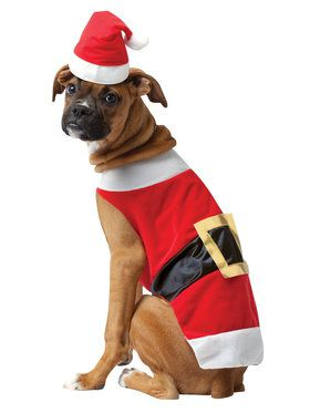 Santa Pet Costume  sc 1 st  BuyCostumes.com & Pet