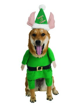 Santa's Helper Pet Costume