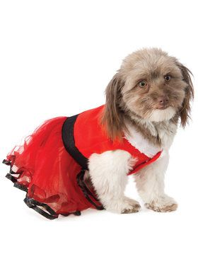 Santa's Sweetie Pet Costume