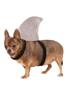 Shark Fin Pet Costume