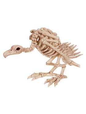 Skeleton Vulture Prop