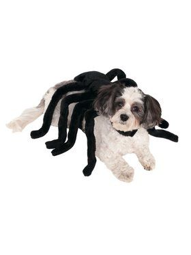Spider Harness Pet Costume