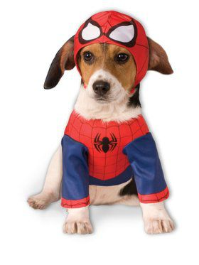 Spider-man Pet Costume Ideas