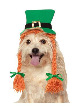 St. Patrick's Day Hat With Braids for Pets