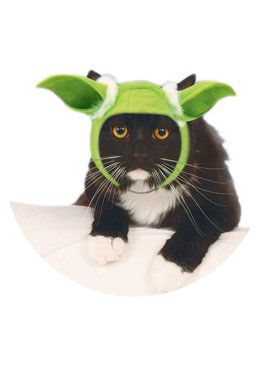 Star Wars Pet Yoda Ears- Cat