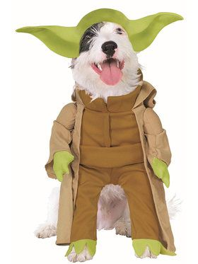 Dog Star Wars Yoda Costume