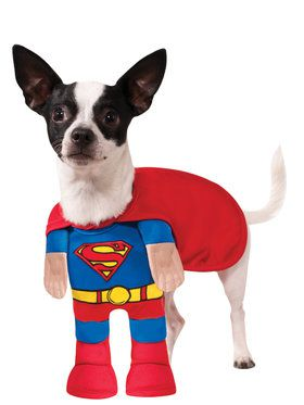 Superman Costume for Pets