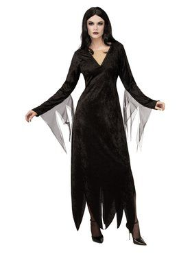 The Addams Family Morticia Adult Costume Adult Costume