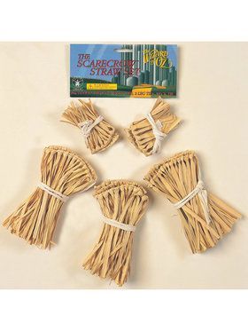 Wizard of Oz Scarecrow Straw Costume Accessory Set