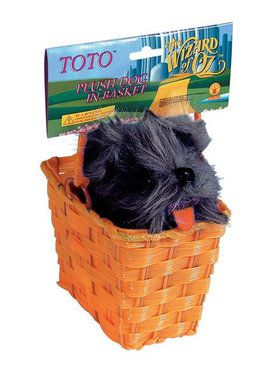 Toto Tm In A Basket