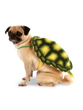 Turtle Shell Pet Costume Medium