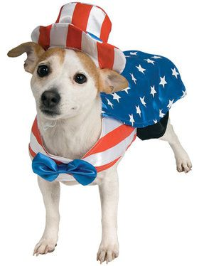 Uncle Sam Dog Costume Medium