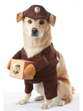 UPS Worker Pet Costume