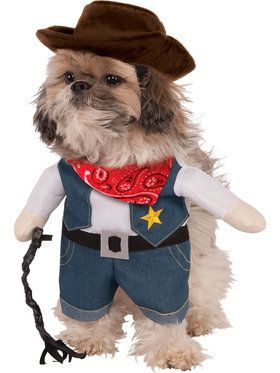 Cowboy Pet Walking Costume