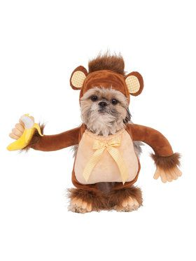 Walking Monkey Costume for Pet
