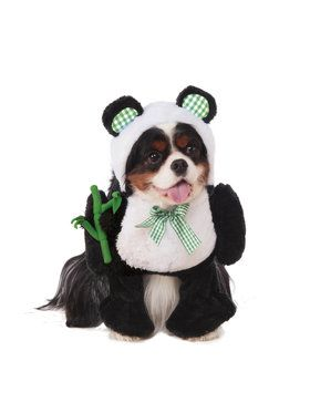 Walking Panda Costume for Pet