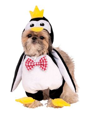 Walking Penguin Costume for Pet