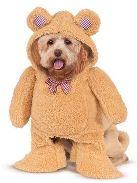 Walking Teddy Bear Pet Costume