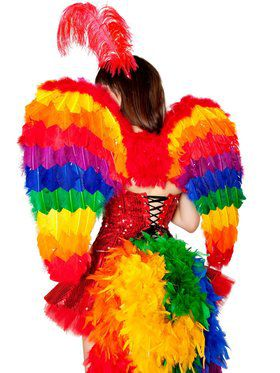 Womens Sexy Rainbow Wings